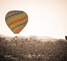 Hot Air Balloon On the AZ Sonoran Desert Sepia by Bo Insogna