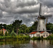 Going Dutch (Enlarge by John44