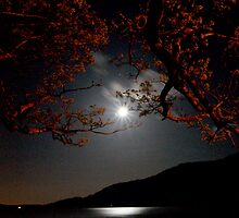 Moonlight on Loch Lomond by PeterGrant