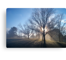 Breaking Fog Canvas Print