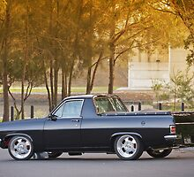 Col's HR Holden Ute by HoskingInd