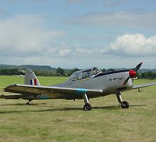 de Havilland DHC-1 Chipmunk by Ross Sharp