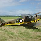 de Havilland DH 87B Hornet Moth by Ross Sharp