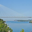 Bridge to Dubrovnik, Croatia (panorama) by Margaret  Hyde