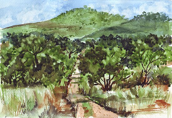 Bosvelddrome/Dreaming of the Bushveld by Maree  Clarkson