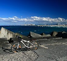 Push Bike and Surfers Paradise by Noel Elliot