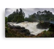 Weve had a bit of rain lately Canvas Print