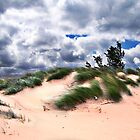 Wind Swept Sand Dunes by perkinsdesigns