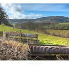 Upper Ridney by Andrew Roland