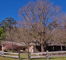 Settlers' Cabin by Liz Worth