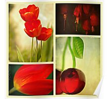 Nature in Red Poster