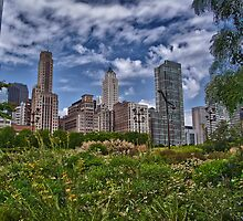 Chicago Sky by Adam Northam