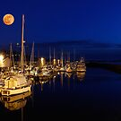 Edmonds Harbor Super Moon by apt10photos