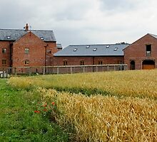 WALK MILL, Waverton, Chester by AnnDixon
