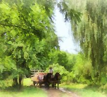 Hayride by Susan Savad