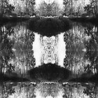 Solitary Twins - Black and White Print by Emily Jones-Blachowicz