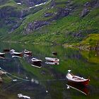 Conquest to Paradise. Visit Lofoten. Å  is one of Norway's most authentic traditional fishing villages. july 2012. by Andy Brown Sugar. by AndGoszcz