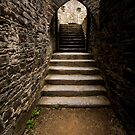 Up the Stairs by Elizabeth Tunstall