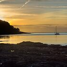 Sunrise Pendennis Point Falmouth by Brian Roscorla
