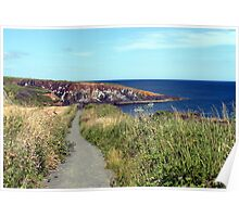 74 - CULLERNOSE POINT, NORTHUMBERLAND (D.E. 2012) Poster