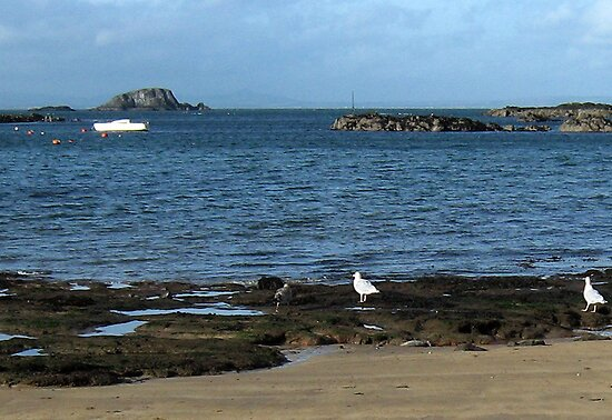 136 - LAMB ISLAND SEEN FROM NORTH BERWICK  (D.E. 2010) by BLYTHPHOTO