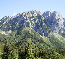 Mountain Landscape by Rastaman