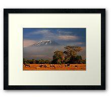Kilimanjaro in early morning light, Amboseli National Park, Kenya, Africa. Framed Print