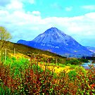 Mount Errigal iPhone Case by Fara