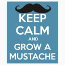 KEEP CALM AND GROW A MUSTACHE by Catherine O'Hagan