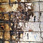 Burnt Bricks iPhone/iPod Case by KimSha