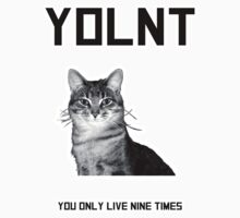 YOL9 You only live nine times! by Edwin Culling (Bearded Wonder Kid)