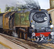 Tangmere by Carole Robins