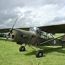 Auster AOP.9 by Ross Sharp