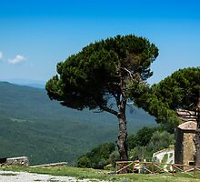 A view from Montepulzino - Toscana by RAN Yaari