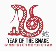 Year of The Snake T-Shirt Kids Clothes
