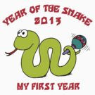 Born Year of The Snake 2013 T-Shirt by ChineseZodiac