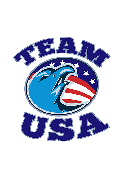 team USA bald eagle american stars and stripes flag  by retrovectors