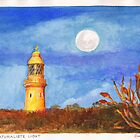 Cape Naturaliste Light by Dai Wynn