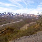 Denali National Park, Tundra country, Alaska, 2012. by johnrf