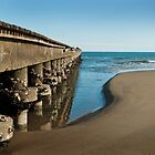 Wharf on the beach by Alvise Busetto