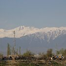 Ice capped mountains as visible in Srinagar by ashishagarwal74