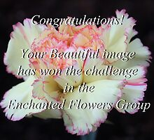 "BANNER  ""Enchanted Flowers Group"" by AnnDixon"