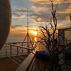 Last Sunset  by Nicole  Markmann Nelson