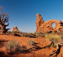 Turret Arch landscape by Owed to Nature