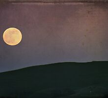 Moonlight Serenade by Laurie Search