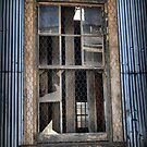 A Willy Window That Was. by Larry Lingard-Davis