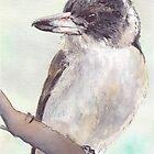 Grey Butcher Bird by ToniBlake