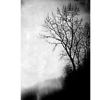 Mystic Daze Photographic Print