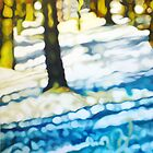Snow in the Woods - Turquoise Shadows by Lynsey Ewan