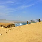 Paracas gazebo by dalsan